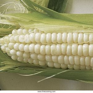 051100036-01-silver-queen-corn_xlg_sql