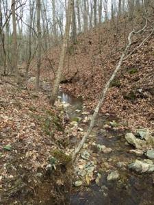 clay creek